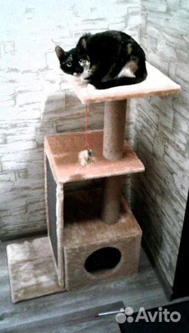 Домики для кошек от производителя купить 4