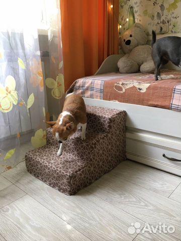 Лесенка для собак 89212512162 купить 2