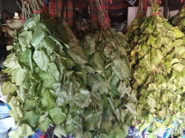 Веник дубовые, липовые, березовые с травами  89501639171 купить 3
