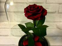 Роза в колбе бордовая