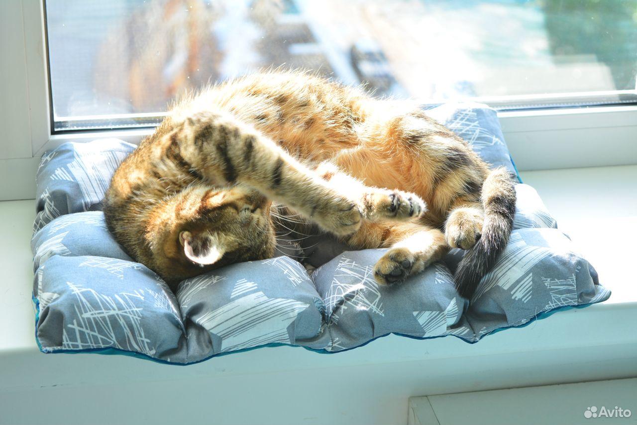 Лежанка для кота/кошки бомбон  89515405523 купить 3
