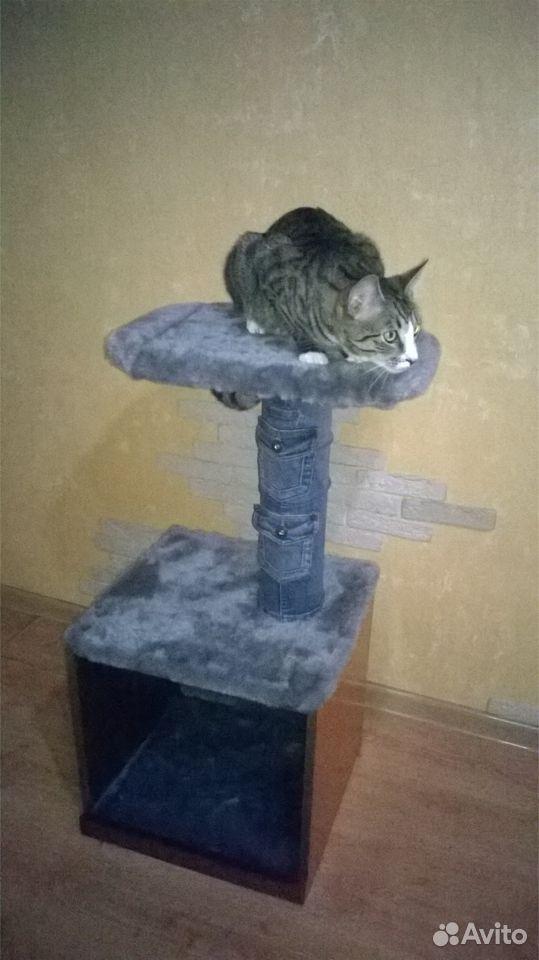 Домик для кота  89005668437 купить 4